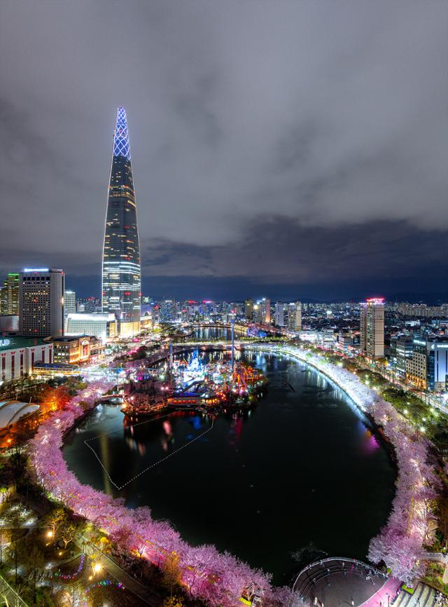 '모래섬' 있던 자리에 석촌호수와 벚꽃…잠실 '천...